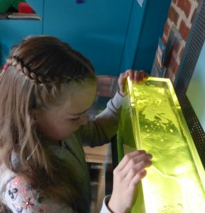Things to do at Green's Windmill and Science Centre